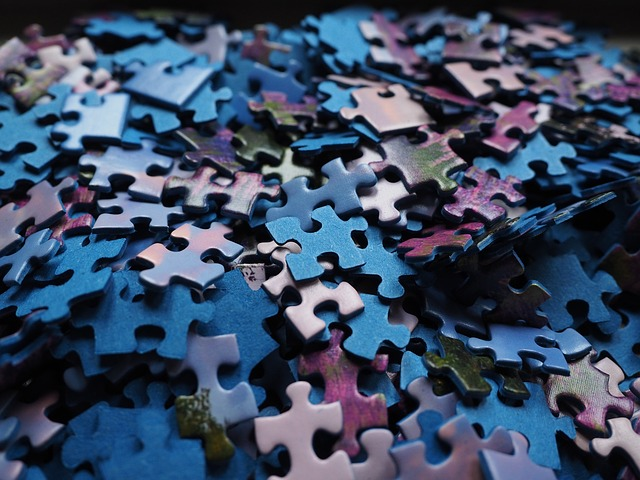 pieces of a jiggsaw puzzle